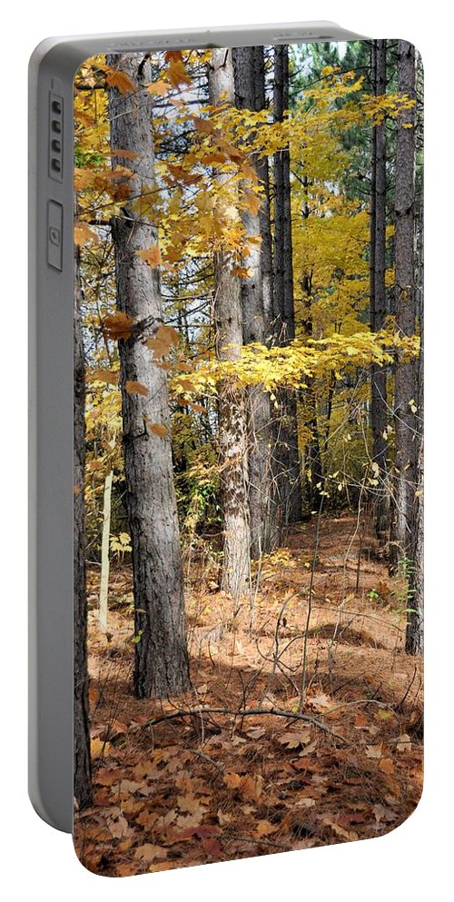 Forest Portable Battery Charger featuring the photograph Leading To Autumn by Valerie Kirkwood