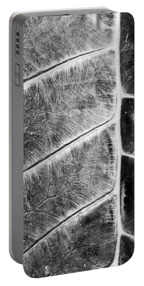 Leaf Portable Battery Charger featuring the photograph Leaf Detail by Alex Snay