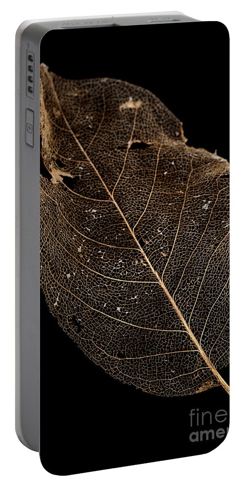 Background Portable Battery Charger featuring the photograph Leaf Lace by Anne Gilbert