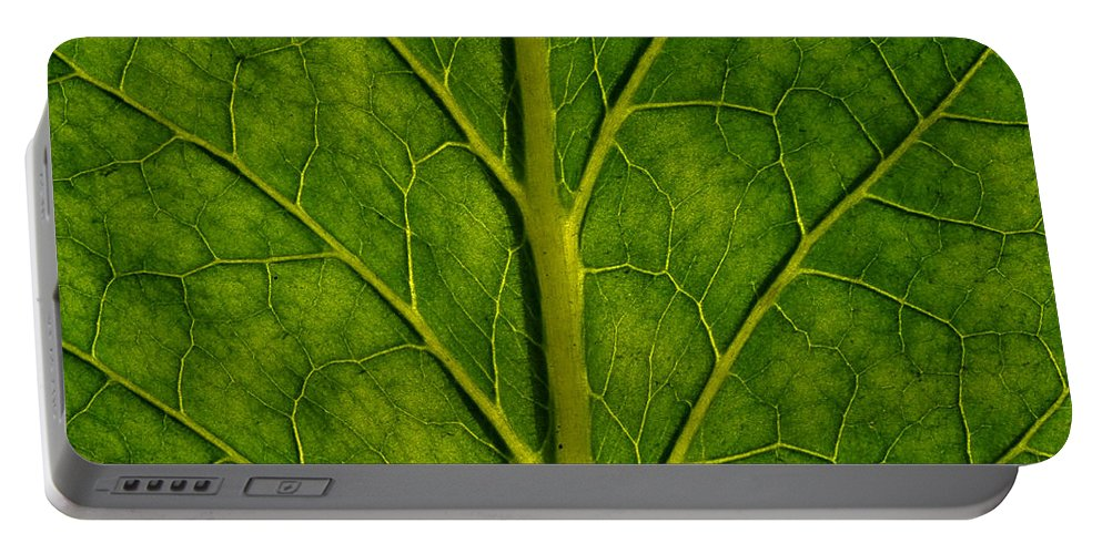 Abstract Portable Battery Charger featuring the photograph Leaf by TouTouke A Y