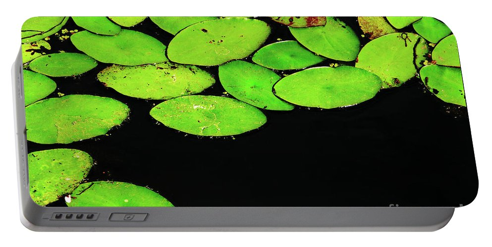 Swamp Portable Battery Charger featuring the photograph Leafy Swamp by Ann Horn