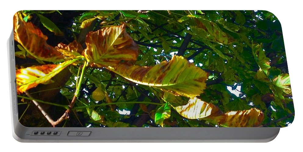 Leafy Image Portable Battery Charger featuring the photograph Leafy Tree Image by Joan-Violet Stretch