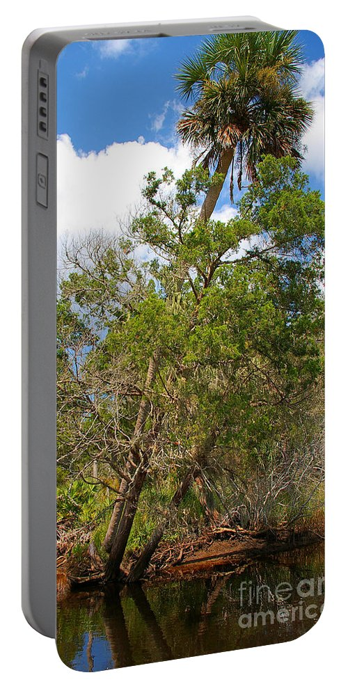 Trees Portable Battery Charger featuring the photograph Lean Too by Nancy L Marshall