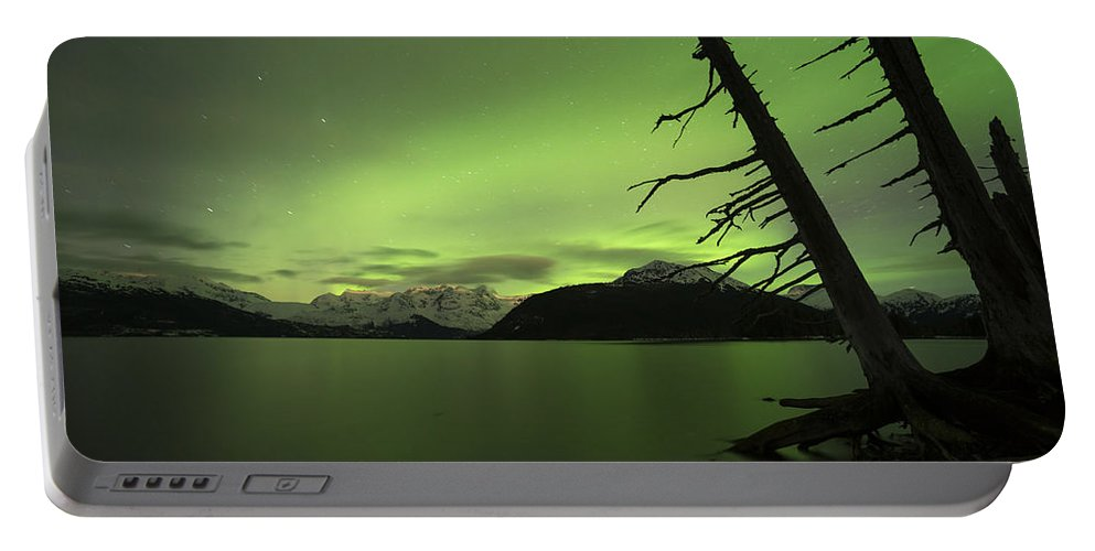 Aurora Portable Battery Charger featuring the photograph Leaning Tree by Ted Raynor
