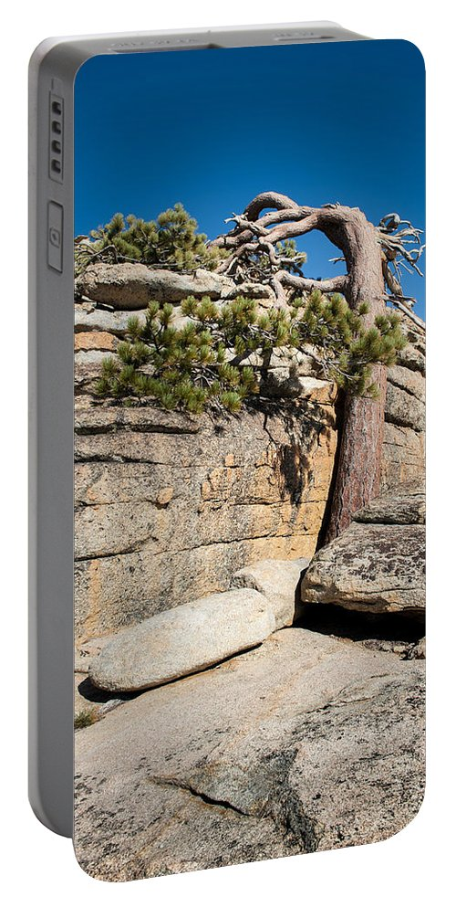 Sierra Nevada Portable Battery Charger featuring the photograph Leaning Tree by Wim Slootweg