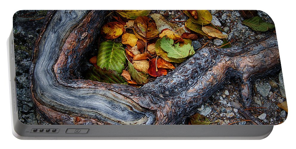 Leaf Portable Battery Charger featuring the photograph Leaves And Root by Robert Woodward