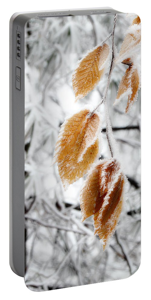 Snow Leaves Portable Battery Charger featuring the photograph Leaves In The Frost by Michael Eingle