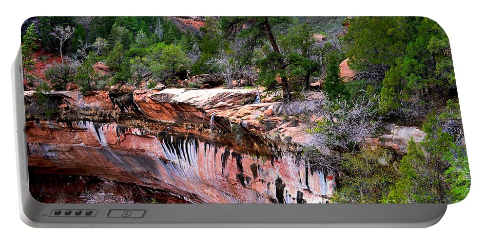 Waterfall Portable Battery Charger featuring the photograph Ledge At Emerald Pools In Zion National Park by Rincon Road Photography By Ben Petersen