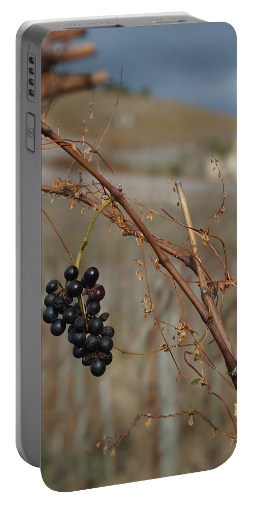 Grapes Portable Battery Charger featuring the photograph Left Behind by Kent Nancollas