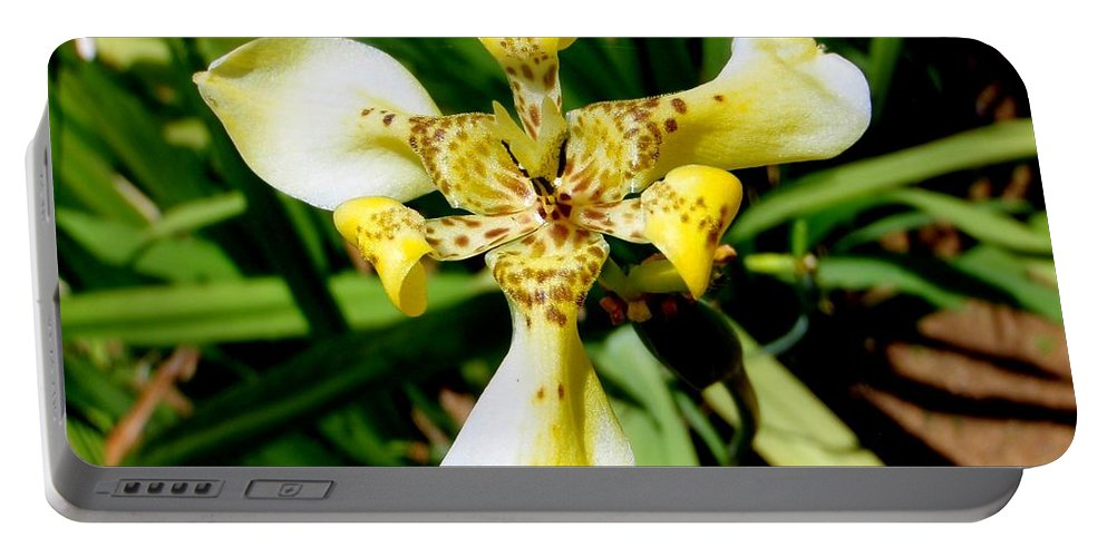 Orchid Portable Battery Charger featuring the photograph Leopard Orchid by Mary Deal