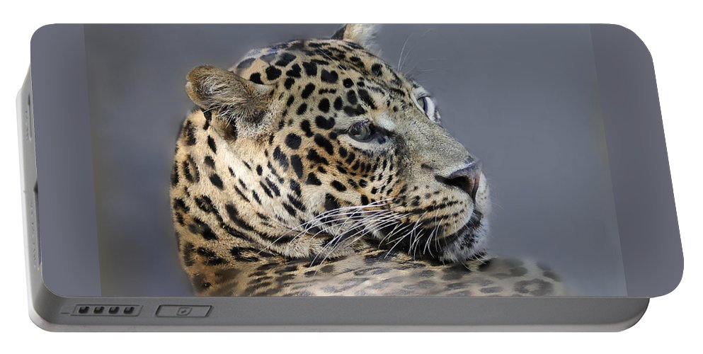 Leopard Portable Battery Charger featuring the photograph Leopard by TN Fairey