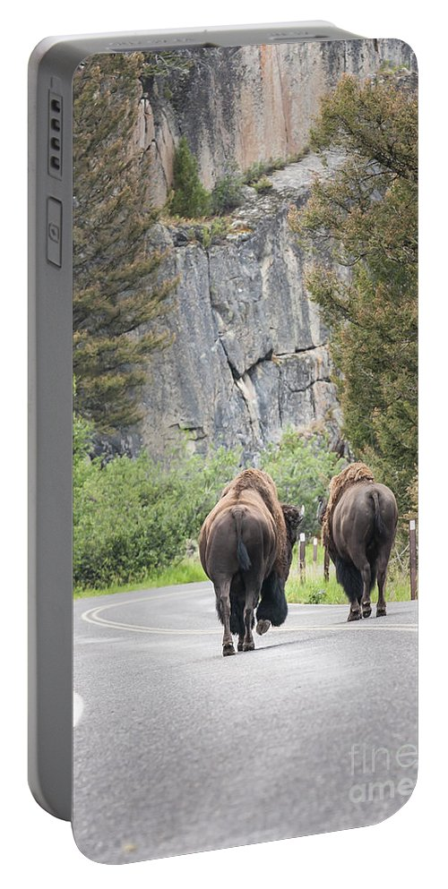 Yellowstone Portable Battery Charger featuring the photograph Let's Start This Day... by Olivier Steiner