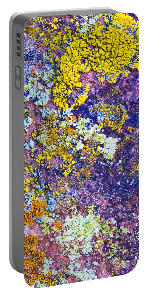 Lichen Abstract Portable Battery Charger featuring the photograph Lichen Abstract by Mae Wertz