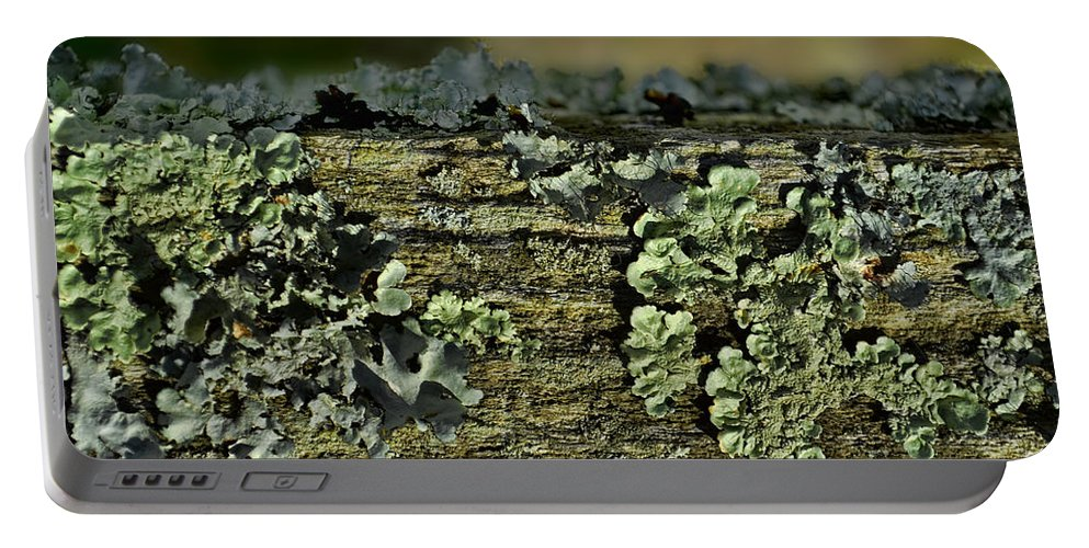 Closeup Portable Battery Charger featuring the photograph Lichen Macro I by Debbie Portwood