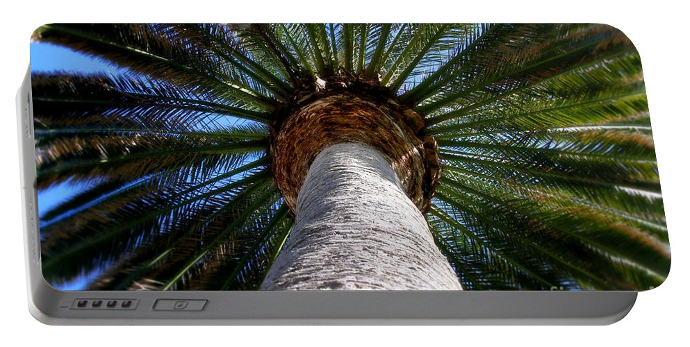 Palm Tree Portable Battery Charger featuring the photograph Life Is Looking Up By Diana Sainz by Diana Raquel Sainz