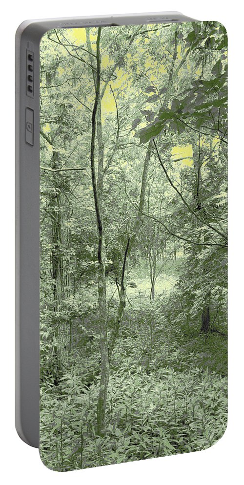 Inviting Portable Battery Charger featuring the photograph Light Forest Scene by Tom Wurl