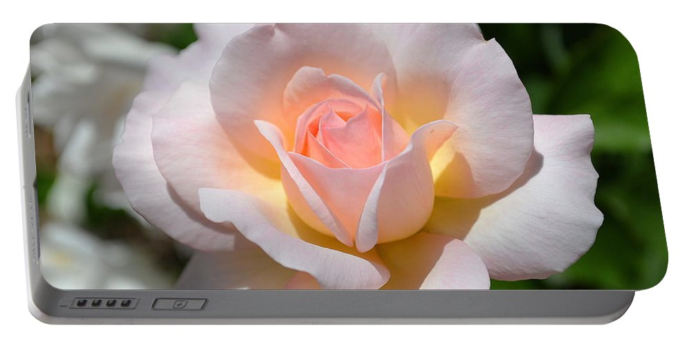 Rose Portable Battery Charger featuring the photograph Light Pink Rose by April Patterson