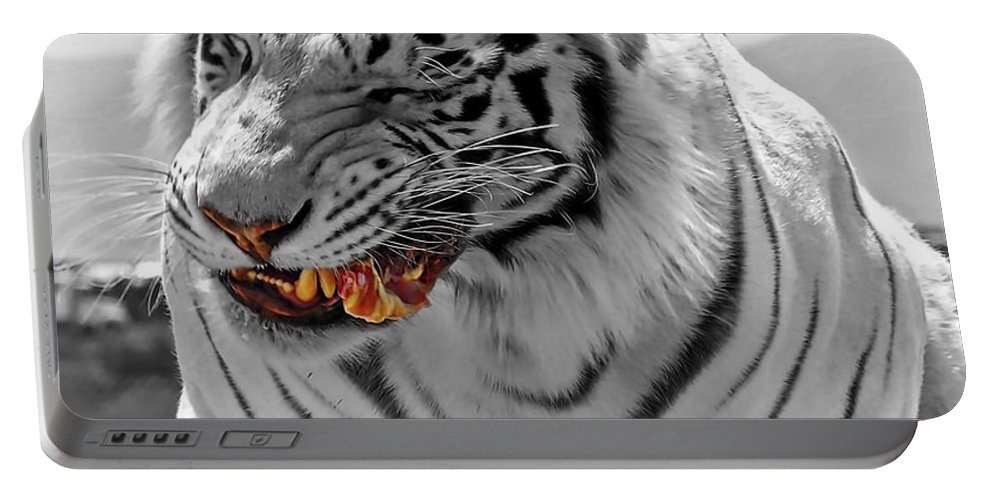 Tiger Portable Battery Charger featuring the photograph Light Snack by Adam Vance
