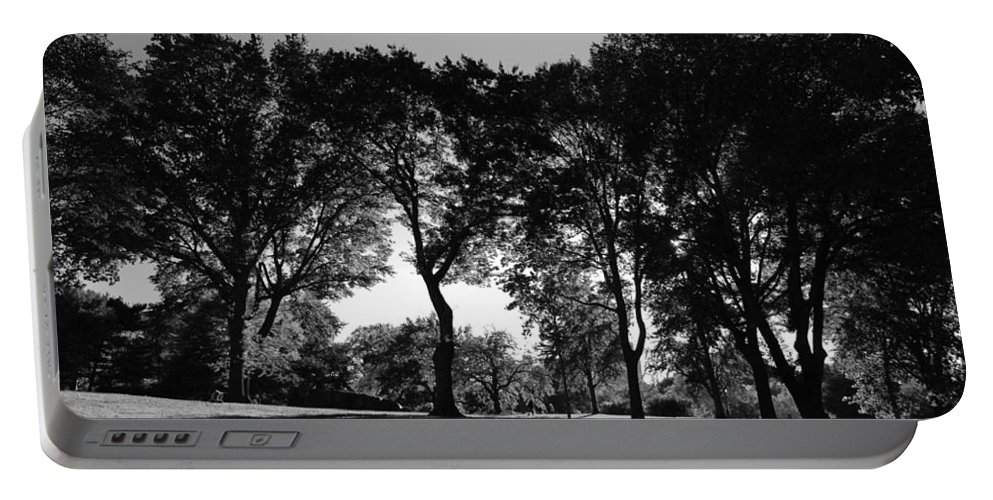 Trees Portable Battery Charger featuring the photograph Light Through The Trees by Eric Tressler