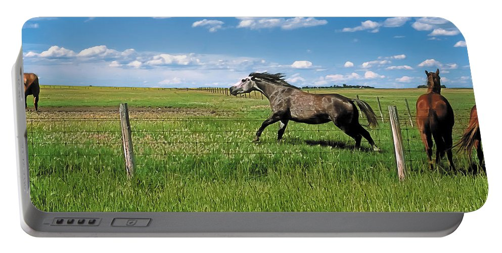 Scenic Portable Battery Charger featuring the photograph Like The Wind 2 by Terry Reynoldson