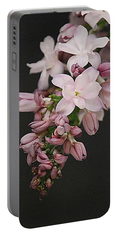 Lilac Portable Battery Charger featuring the photograph Lilac On Black by Francie Davis