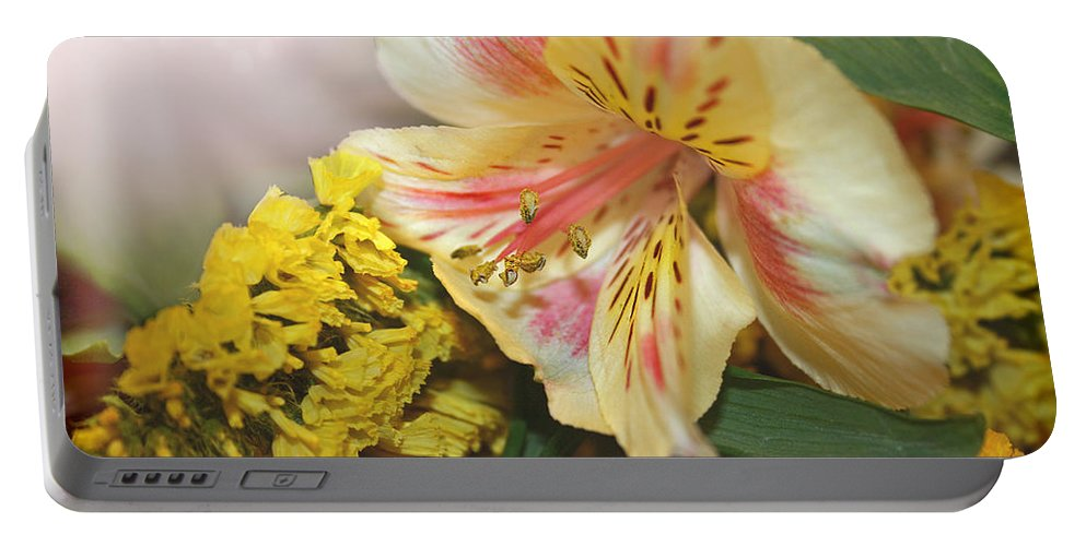 Lily Portable Battery Charger featuring the photograph Lily Basking In Light by Susan McMenamin