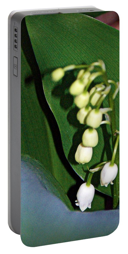 lily Of The Valley Blooms Portable Battery Charger featuring the photograph Lily Of The Valley by Cricket Hackmann