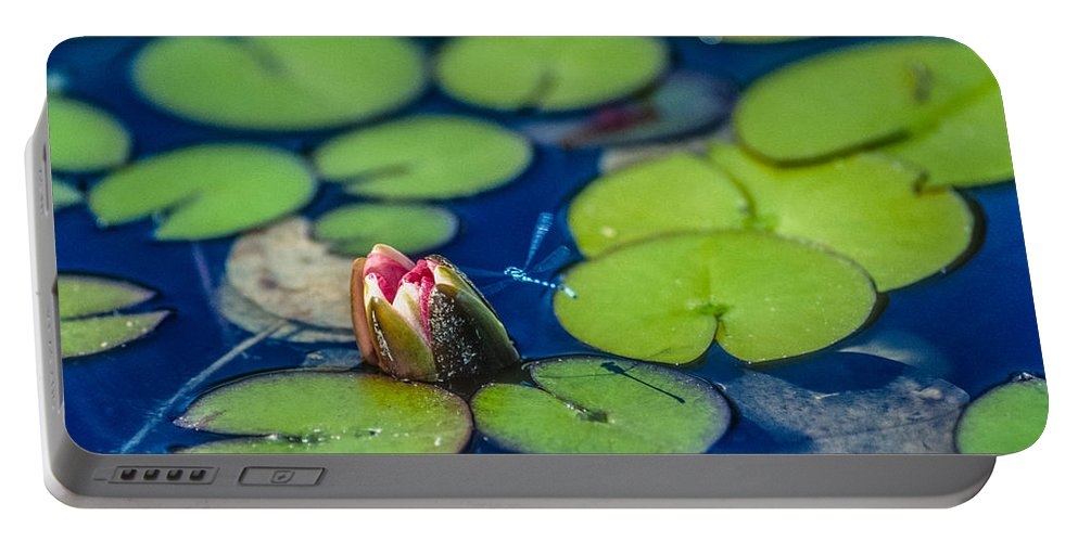 Dragonfly Portable Battery Charger featuring the photograph Lily Pads by Mike Penney
