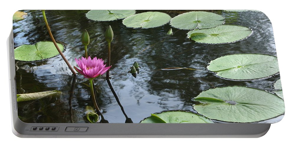 Waterlily Portable Battery Charger featuring the photograph Lily Pond by Irina Davis