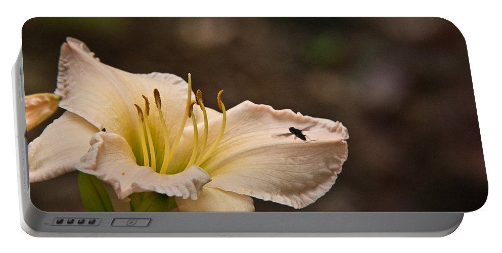 Fly Portable Battery Charger featuring the photograph Lily With Fly by Douglas Barnett
