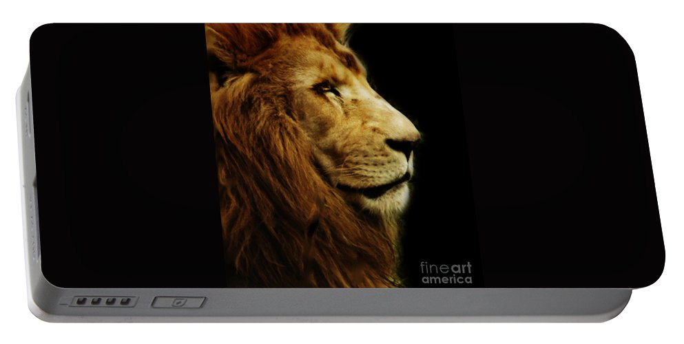 Animals Portable Battery Charger featuring the photograph Lion by Ben Yassa
