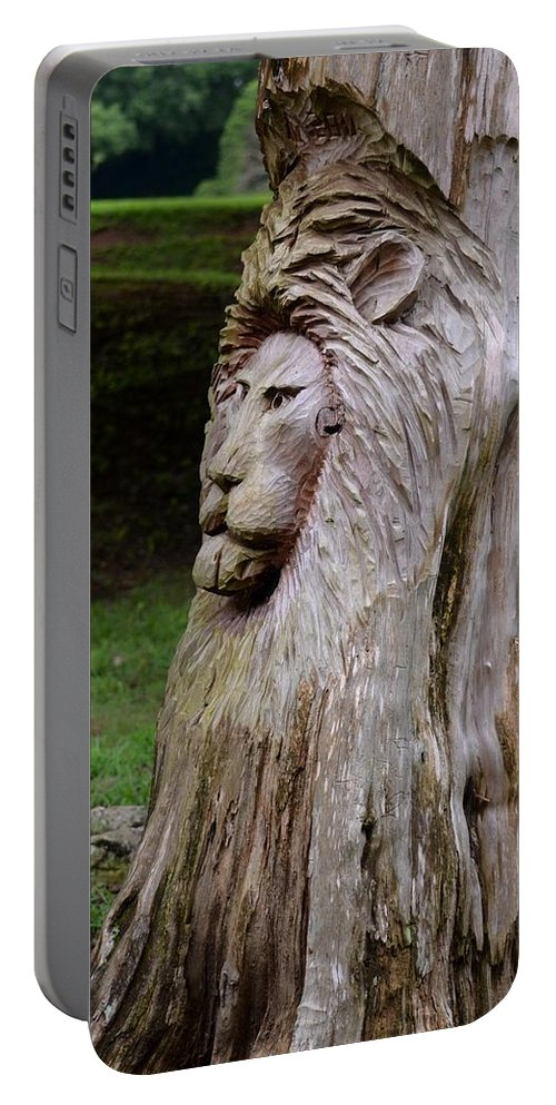 Lion Tree Portable Battery Charger featuring the photograph Lion Tree by Maria Urso