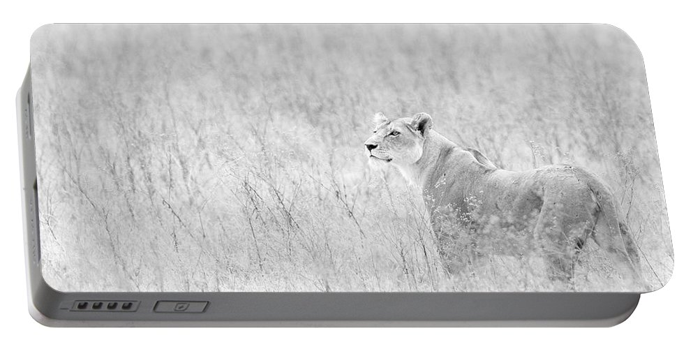 African Lion Portable Battery Charger featuring the photograph Lioness In Black And White by Max Waugh
