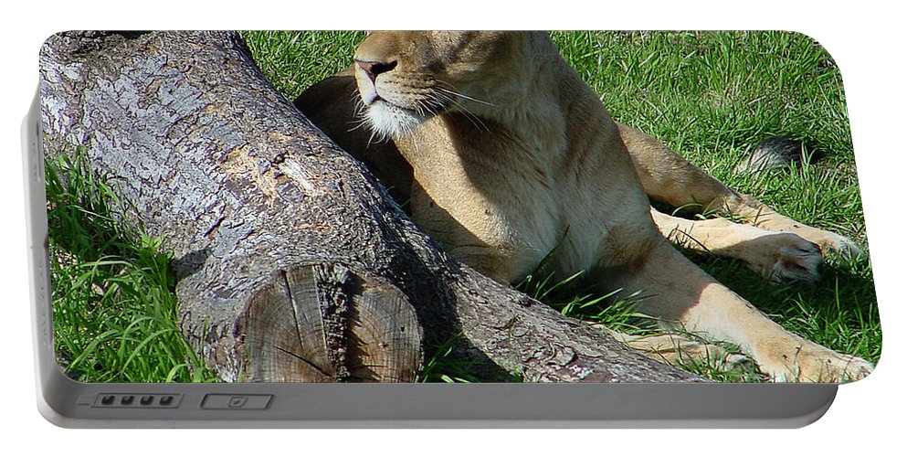 Lion Portable Battery Charger featuring the photograph Lioness2 by Gary Gingrich Galleries
