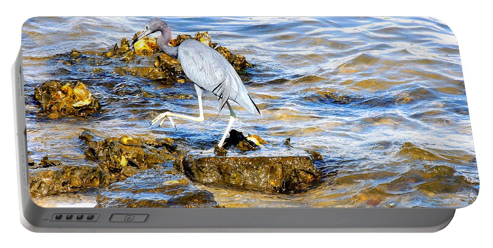 Wading Birds Portable Battery Charger featuring the photograph Little Blue Heron by Marilyn Holkham