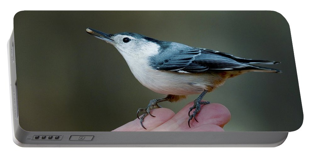 Festblues Portable Battery Charger featuring the photograph Little Food Big Trust.. by Nina Stavlund