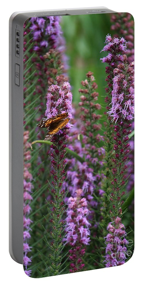 Photography Portable Battery Charger featuring the photograph Little Orange And Black Butterfly by Jackie Farnsworth