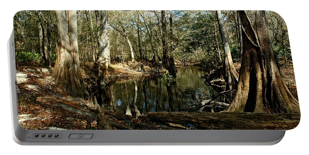 Portable Battery Charger featuring the photograph Little Withlacoochee River by Norman Johnson
