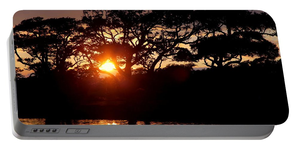 Oak Trees Portable Battery Charger featuring the photograph Live Oak Silhouette by Karen Wiles