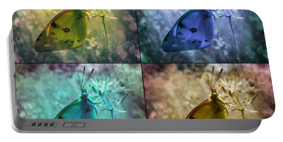 Butterfly Portable Battery Charger featuring the photograph Lives Of A Butterfly by Marianna Mills