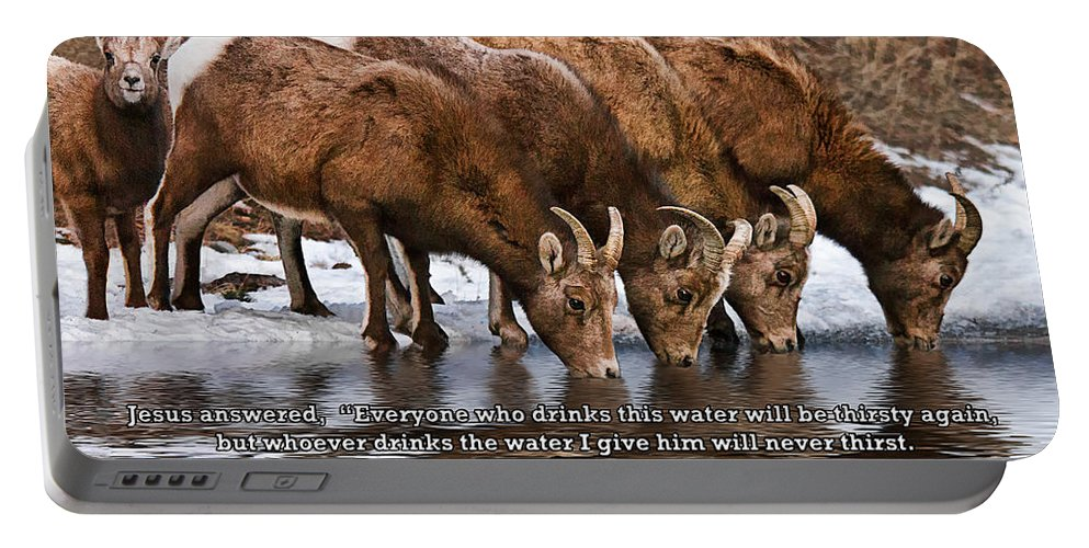 Rocky Mountain Bighorn Sheep Portable Battery Charger featuring the photograph Living Water by Priscilla Burgers