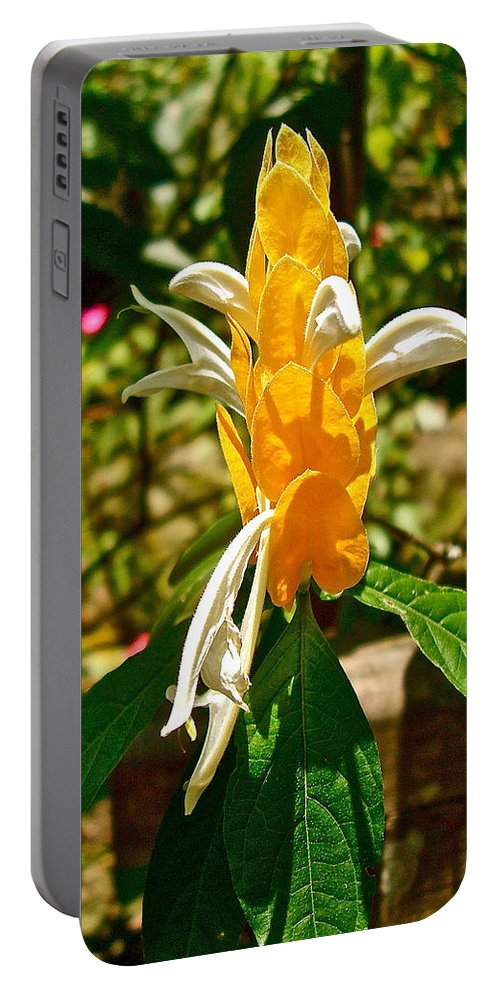 Lollipop Flower In Quepos. Costa Rica Portable Battery Charger featuring the photograph Lollipop Flower In Quepos-costa Rica by Ruth Hager