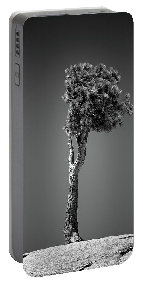 Black & White Portable Battery Charger featuring the photograph Lone Pine II by Peter Tellone
