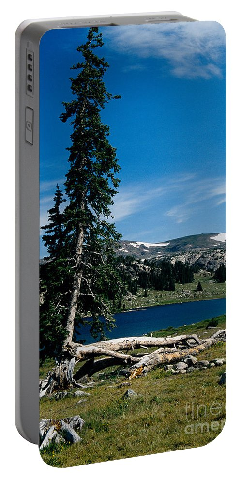 Mountains Portable Battery Charger featuring the photograph Lone Tree At Pass by Kathy McClure