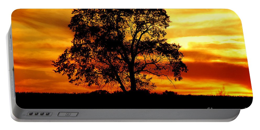 Tree Portable Battery Charger featuring the photograph Lone Tree by Mary Carol Story