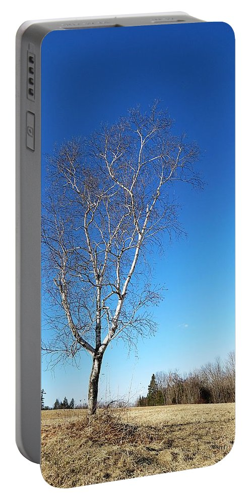 Tree Portable Battery Charger featuring the photograph Lone Tree by MTBobbins Photography