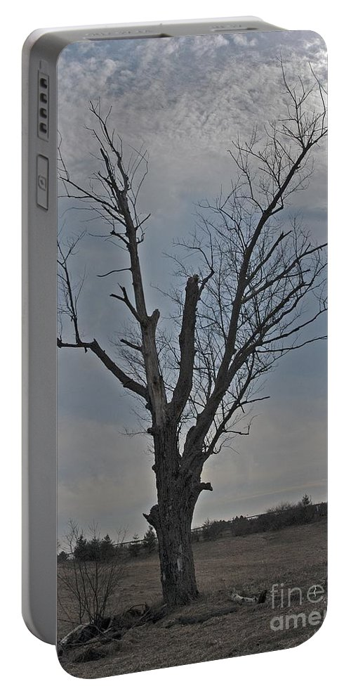 Dead Tree Portable Battery Charger featuring the photograph Lonesome by Joseph Yarbrough
