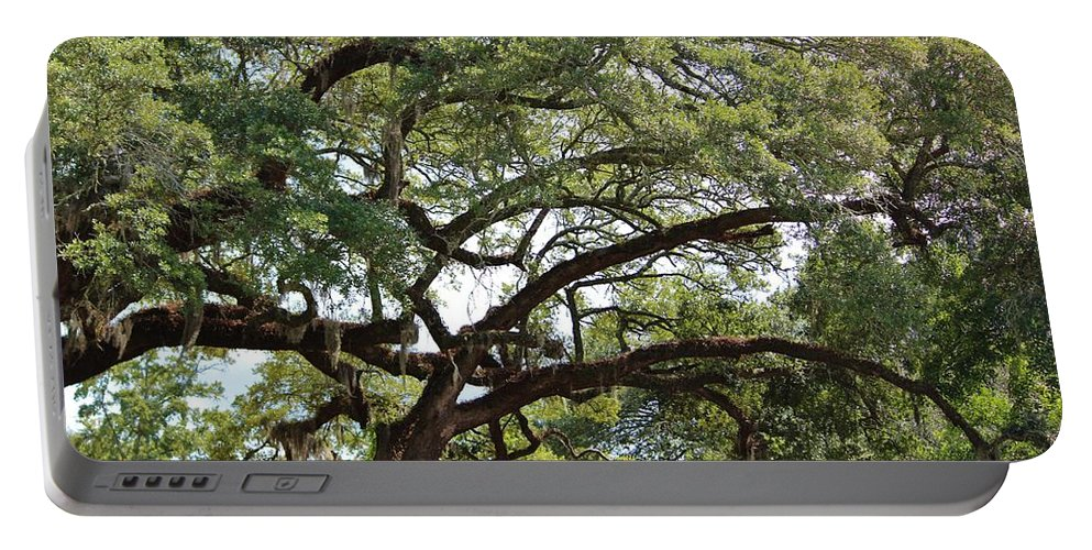 Huge Portable Battery Charger featuring the photograph Long Branches by Cynthia Guinn