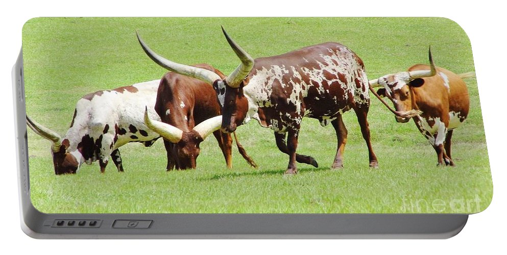 Ankole Portable Battery Charger featuring the photograph Longhorn Cattle by D Hackett