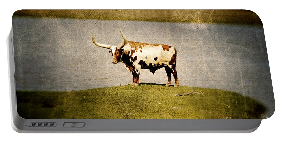 Lensbaby Portable Battery Charger featuring the photograph Longhorn by Scott Pellegrin